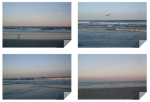 beachpics